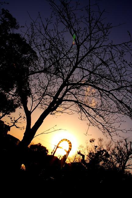 公園夕景1