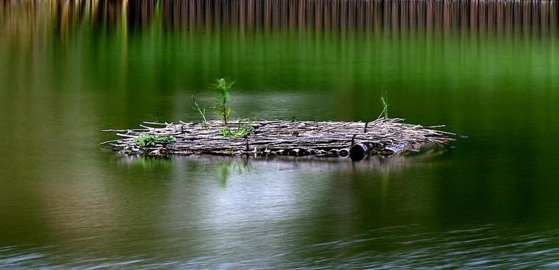 湖面の静寂A