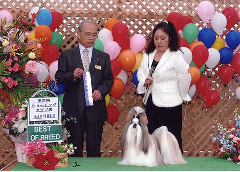 2008119bob.jpg