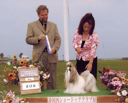 2008915.jpg