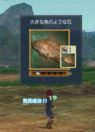 大きな魚のような石