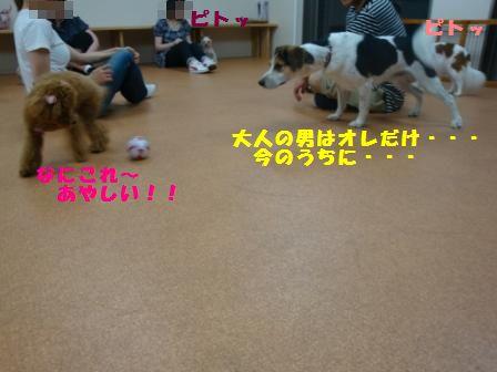 yoru10.jpg