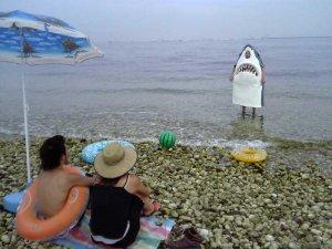 おもしろ画像☆サメ