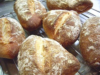 自家製酵母のパン