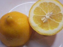 カットレモン250