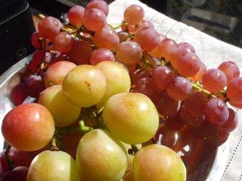 葡萄2種350
