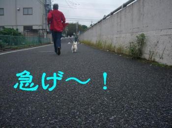 ブログ624