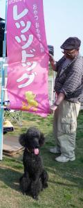 Eコッカーネット 春の運動会