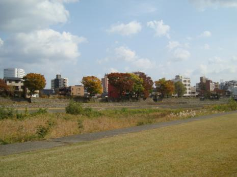 犀川の景色