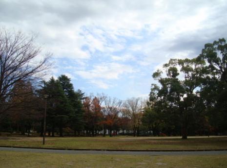 中央公園。