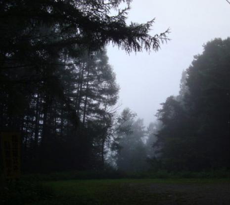 朝もやの景色
