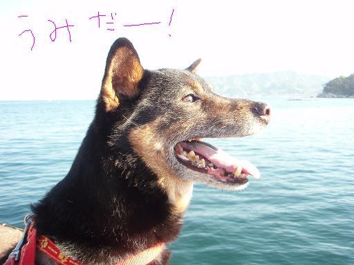 2007.4.28~30木更津 (6)