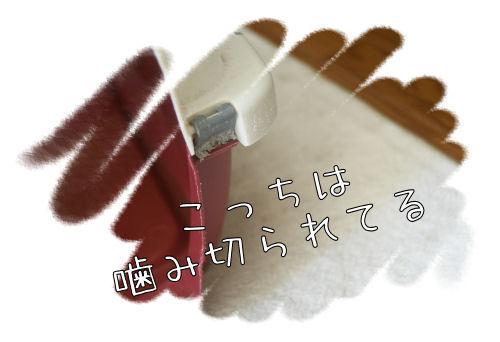 1-15-5.jpg