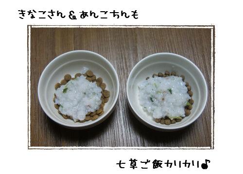 1-8-1.jpg
