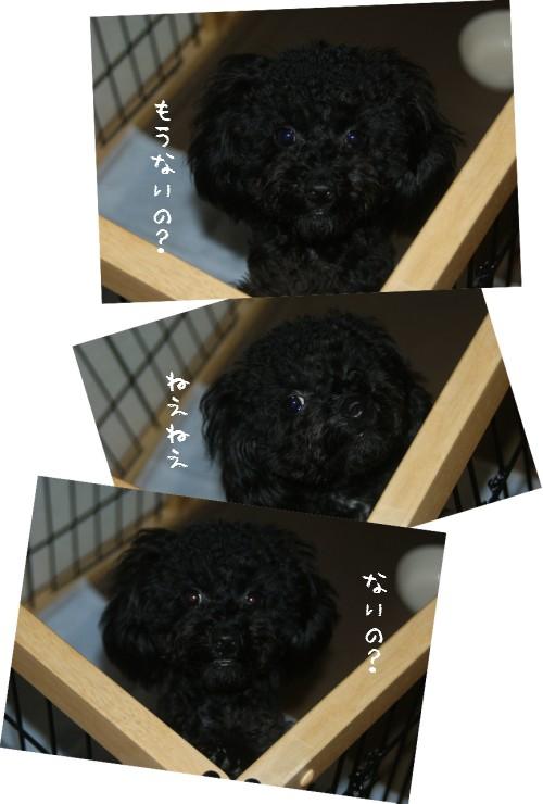 12-25-11.jpg