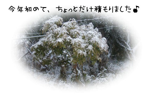 12-26-1.jpg