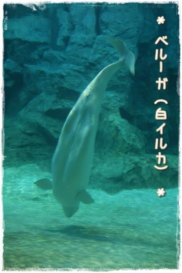nagoya-7.jpg