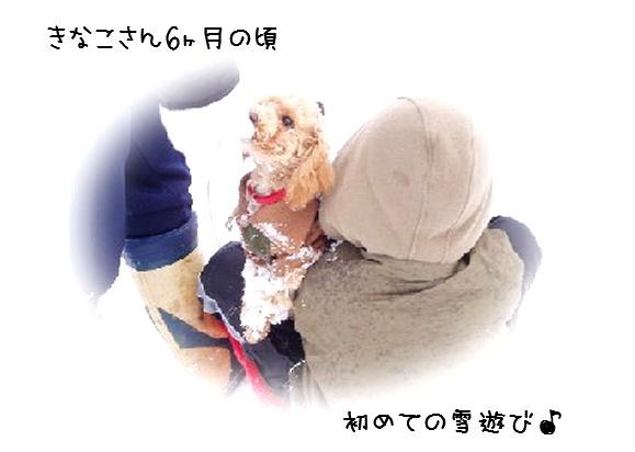 yuki-1.jpg