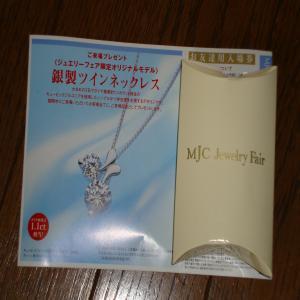 DSC00330_convert_20090720235845.jpg