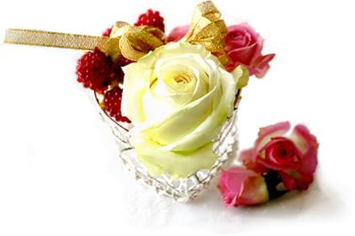 sweet_rose01_400.jpg