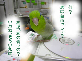 706142.jpg