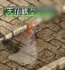 20060815080350.jpg