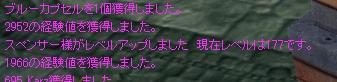 2009y03m15d_135948446.jpg