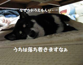 cosuke-012.jpg