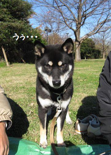 cosuke-016.jpg