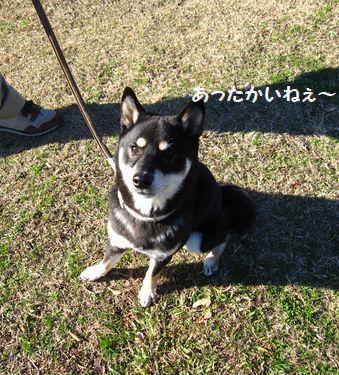 cosuke-017.jpg