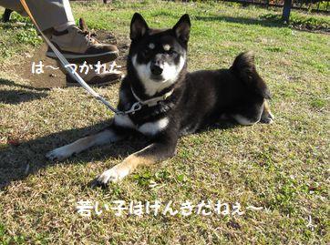 cosuke-018.jpg