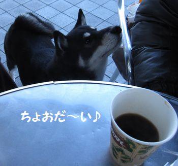 cosuke-029.jpg