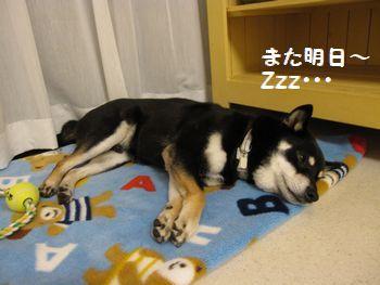 cosuke-033.jpg