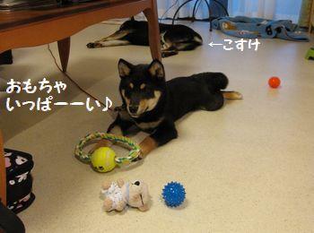 cosuke-035.jpg