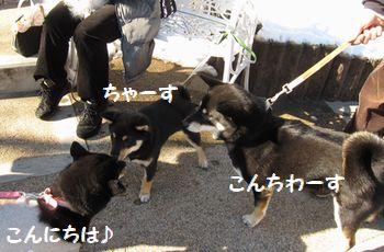 cosuke-038.jpg