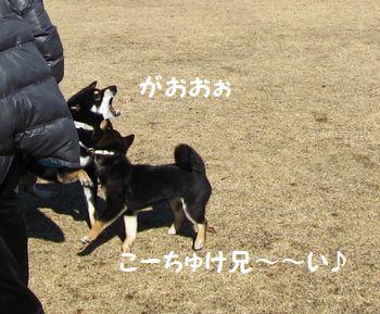 cosuke-040.jpg