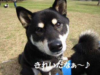 cosuke-056.jpg