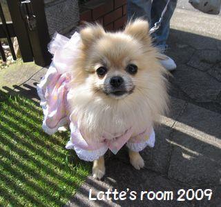 latte-1052.jpg