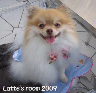 latte-1256.jpg