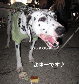 latte-1277.jpg