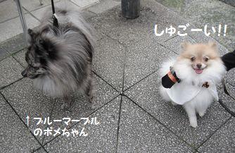 latte-134.jpg