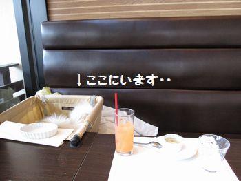 latte-284.jpg