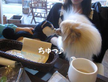 latte-402.jpg