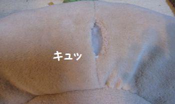 latte-522.jpg