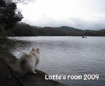 latte-534.jpg