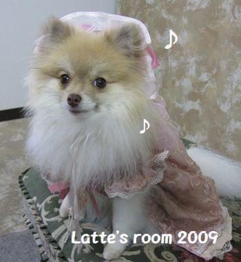 latte-537.jpg