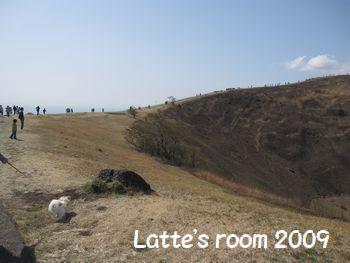 latte-5450.jpg