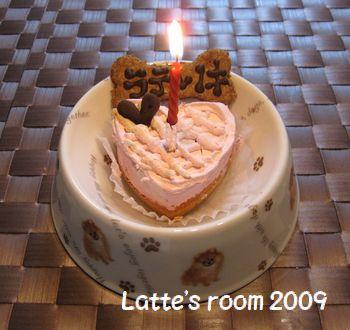 latte-581.jpg