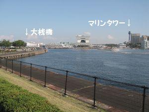 view-003.jpg