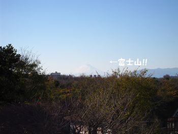 view-034.jpg